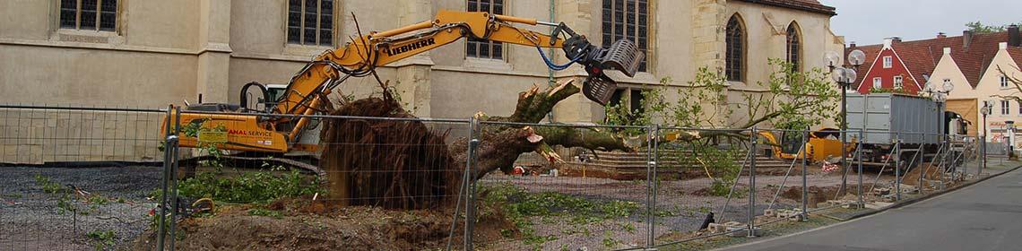 Abbruch- und Forstarbeiten
